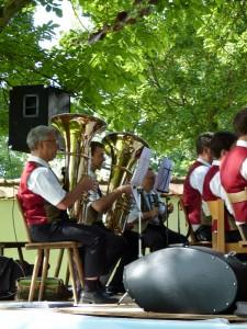 2014-06-08 Serenadenkonzert Pfarrgarten 033 (768x1024)